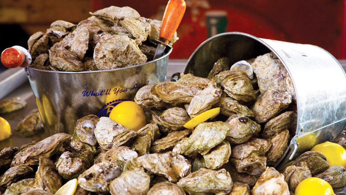 Young Adult Oyster Roast